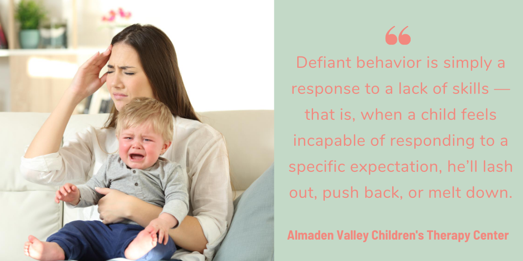 Defiant behavior is simply a response to a lack of skills — that is, when a child feels incapable of responding to a specific expectation, he'll lash out, push back, or melt down.